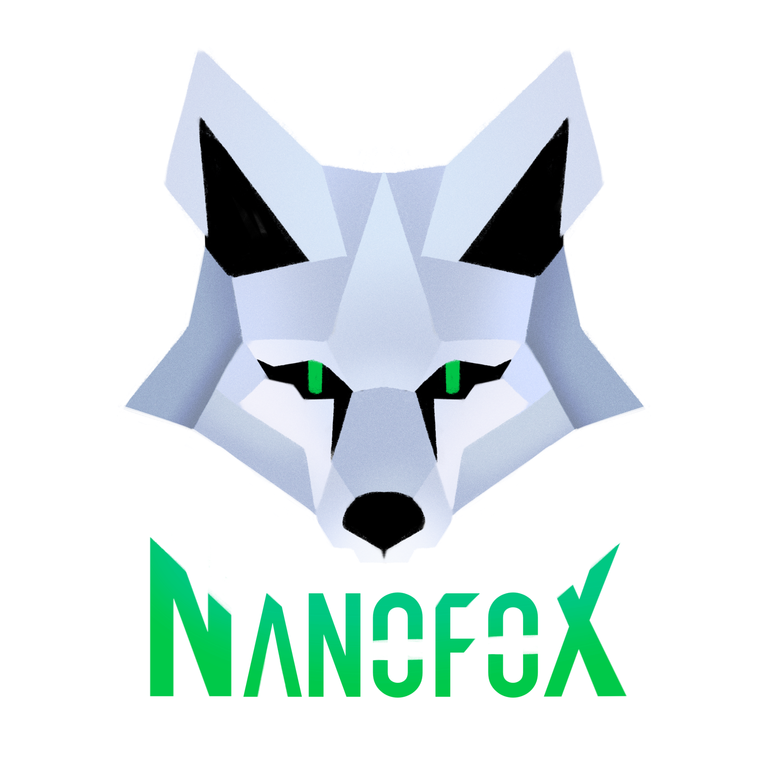 Nanofox Tech Reviews